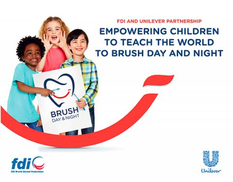 FDI project_Brush Day and Night